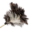 Professional Ostrich Feather Duster, 7 Handle