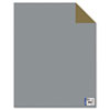 Two Cool Poster Board, 22 x 28, Gold/Silver, 25 per Pack
