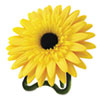 Daisy Air Freshener, Sunny Bloom and Citrus, Yellow, 3.8oz