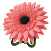 Daisy Air Freshener, Sparkling Bloom and Peach, Coral Pink, 3.8oz