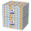 White Facial Tissue, 2-Ply, White, 100/box, 10 Bx/bundle, 6 Bundles/carton