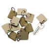 Extra Blank Hook & Loop Tags, Security-Backed, 1 1/8 X 1, Beige, 12/pack