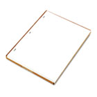 Ledger Sheets for Corporation and Minute Book, White, 11 x 8-1/2, 100 Sheets WLJ90310