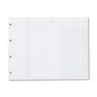 Accounting, 9-1/4 x 11-7/8, 100 Loose Sheets/Pack WLJN2D