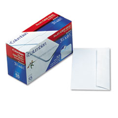Grip Seal Security Tint Business Envelope, #6 3/4, 3 5/8 x 6 1/2, White, 55/Box