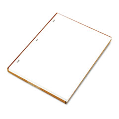 LEDGER SHEETS FOR CORPORATION AND MINUTE BOOK, WHITE, 11 X