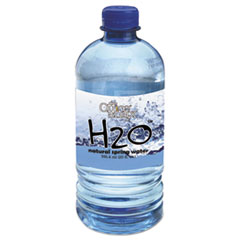 Bottled Spring Water, 20oz, 24/Carton