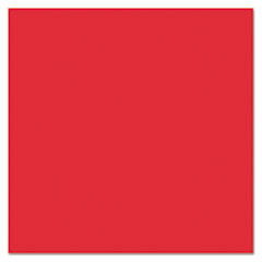 Plastic Poster Board, 22 x 28, Red, 25/Carton