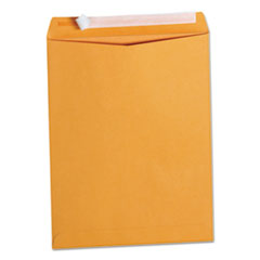 Peel Seal Strip Catalog Envelope, 10 x 13, Kraft, 100/Box