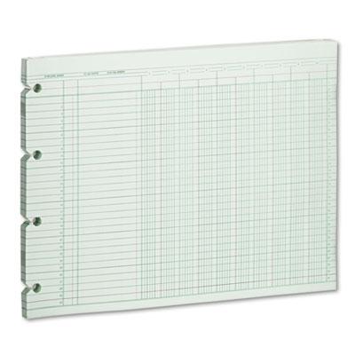Accounting Sheets, 10 Column, 9-1/4 x 11-7/8, 100 Loose Sheets/P