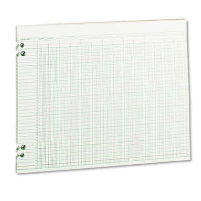Accounting Sheets, 24 Columns, 11 x 14, 100 Loose Sheets/Pack, G