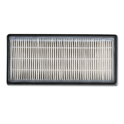 HEPAClean Replacement Filter, 2/Pack