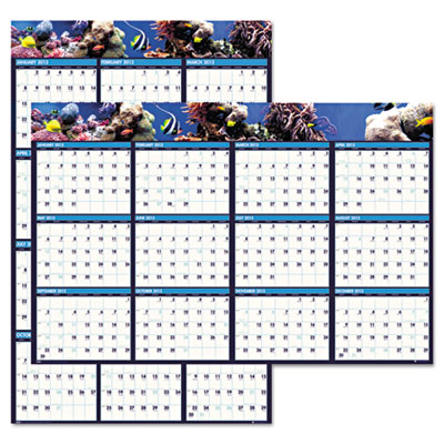 Earthscapes Sea Life Scenes Reversible/Erasable Wall Calendar, 2
