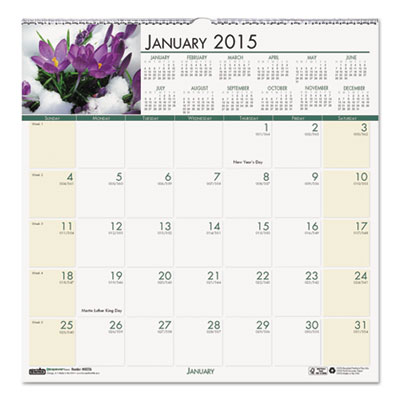 Floral Monthly Wall Calendar, 12 x 12, 2015