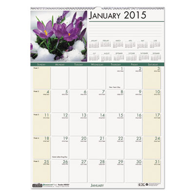 Floral Monthly Wall Calendar, 12 x 16 1/2, 2015