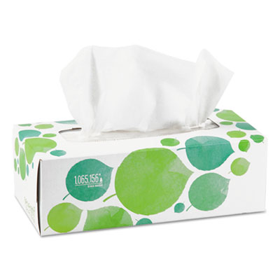 100% Recycled Facial Tissue 2-Ply White 175 Sheets/Box 13712