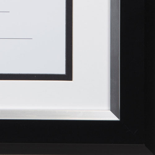 2-Tone 11 x 14 Document Frame, 8 1/2 x 11 Insert, Black/Silver Frame ...