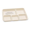 NatureHouse® Biodegradable/Compostable Bagasse Food Trays, 5-Compartment, White, 400/Carton