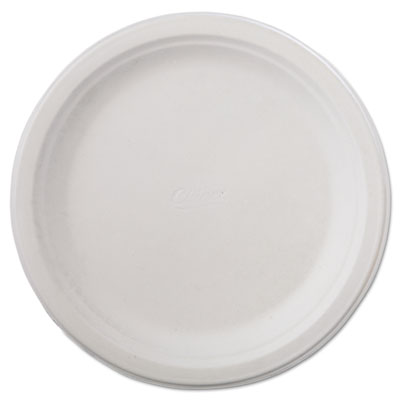 "Classic paper dinnerware, plate, 9 3/4"" dia, white, 125/pack, 4 packs/carton, sold as 1 carton, 500 each per carton"