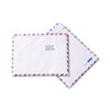 SURVIVOR Tyvek USPS Air Mail Mailer, Side Seam, 10 x 13, White, 100/Box QUAR1600