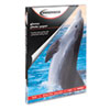 Innovera® Glossy Photo Paper, 8-1/2 x 11, 50 Sheets/Pack IVR99450