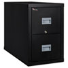 Patriot Insulated Two-Drawer Fire File, 17 3/4w x 31 5/8d x 27 3/4h, Black