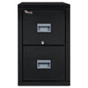 Patriot Insulated Two-Drawer Fire File, 20-3/4w x 31-5/8d x 27-3/4h, Black