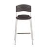 CaféWorks Bistro Stool, Graphite Seat/Graphite Back, Silver Base