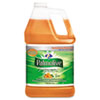 Dishwashing Liquid & Hand Soap, Orange Scent, 1 gal Bottle, 4/Carton