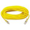 Polar/Solar Outdoor Extension Cord, 100ft, AWG 14/3
