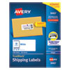 SHIPPING LABELS W/ TRUEBLOCK TECHNOLOGY, INKJET PRINTERS, 2 X 4, WHITE, 10/SHEET, 100 SHEETS/BOX