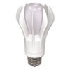 Environmentally Friendly LED Light Bulbs