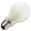 Environmentally Friendly CFL Bulbs