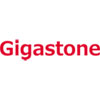 Gigastone Products