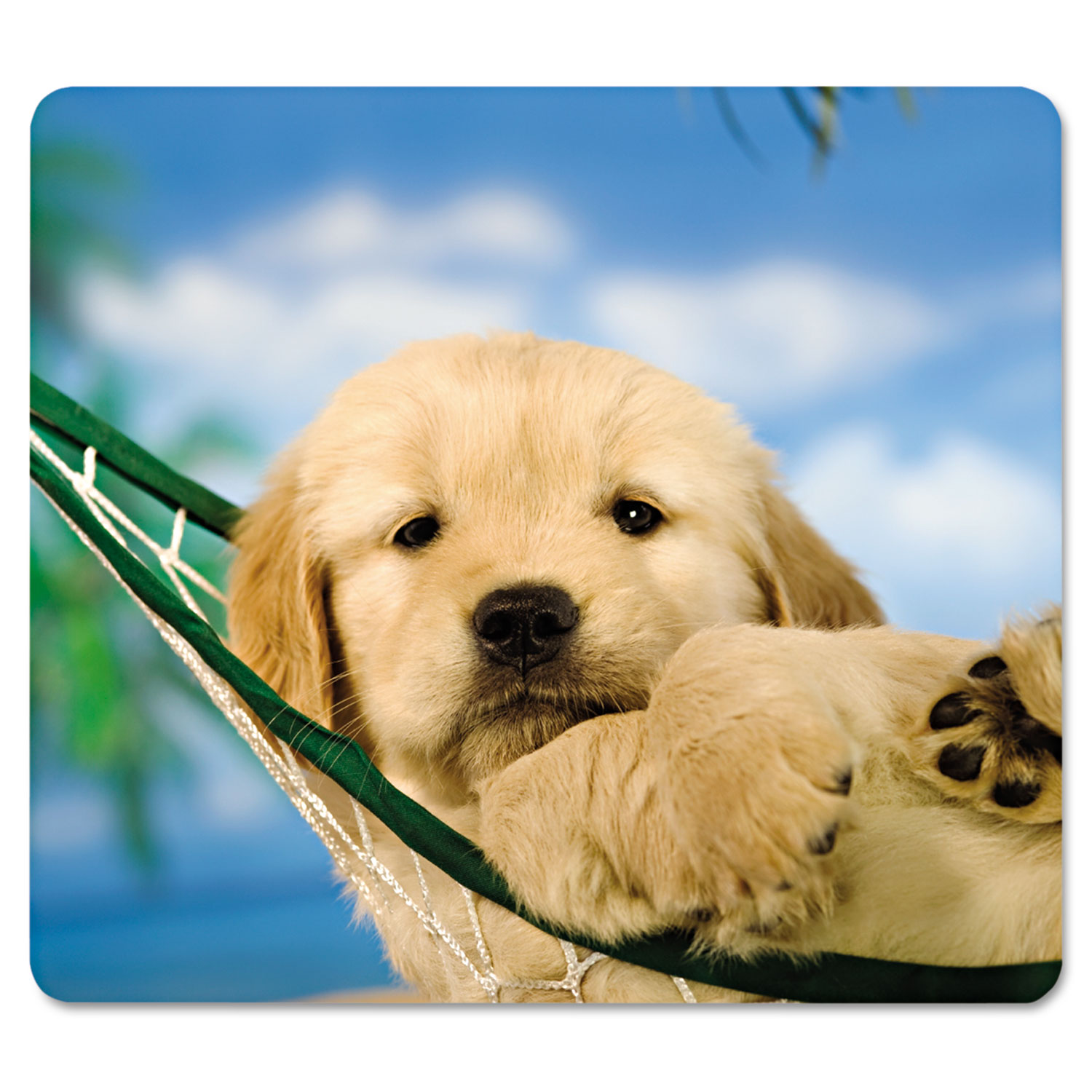Recycled Mouse Pad, Nonskid Base, 9 x 8 x 1/16, Puppy in Hammock