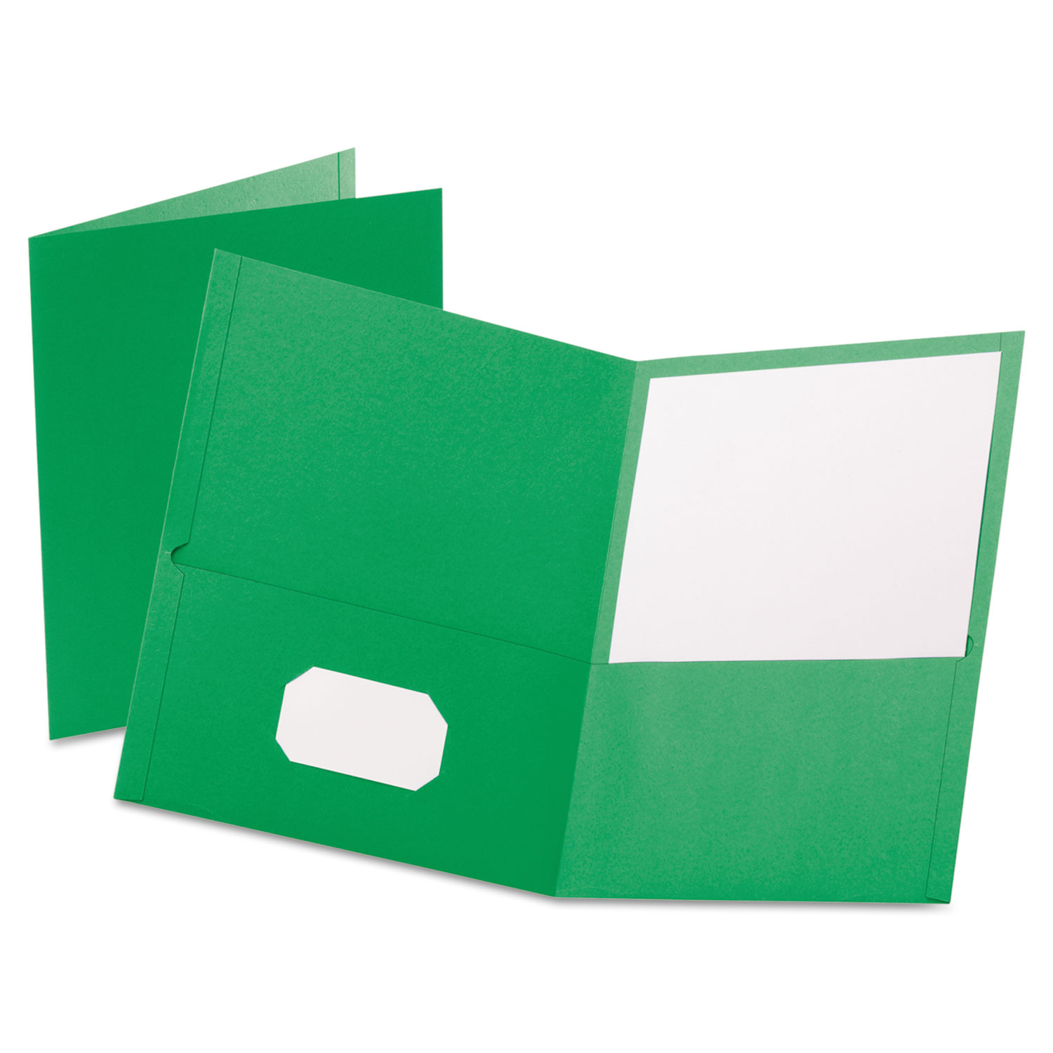 Twin-Pocket Folder, Embossed Leather Grain Paper, Light Green, 25/Box