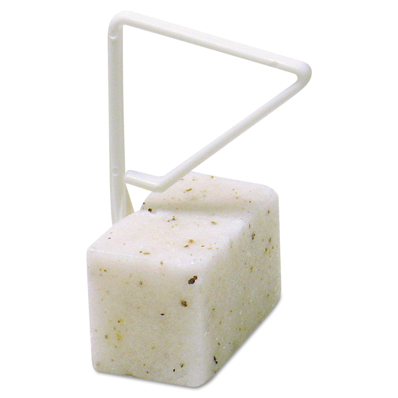 ParaZyme Toilet Bowl Block, 3.5-Oz, White, Springtime Fragrance, Dozen