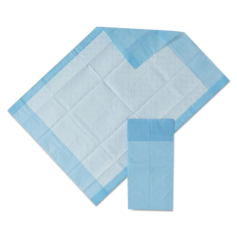 """Protection Plus Disposable Underpads, 17"""" x 24"""", Blue, 25/Bag"""