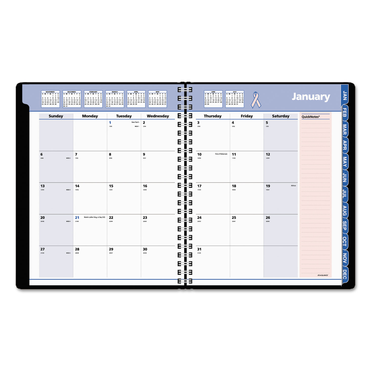 quicknotes special edition monthly planner by at a glance