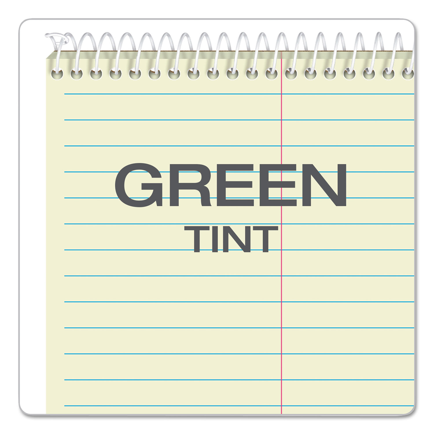 New Version Assorted Color Covers Green Tint Paper Steno Books 80 Sheets 6 x 9 Gregg Rule 80221 4 Pack