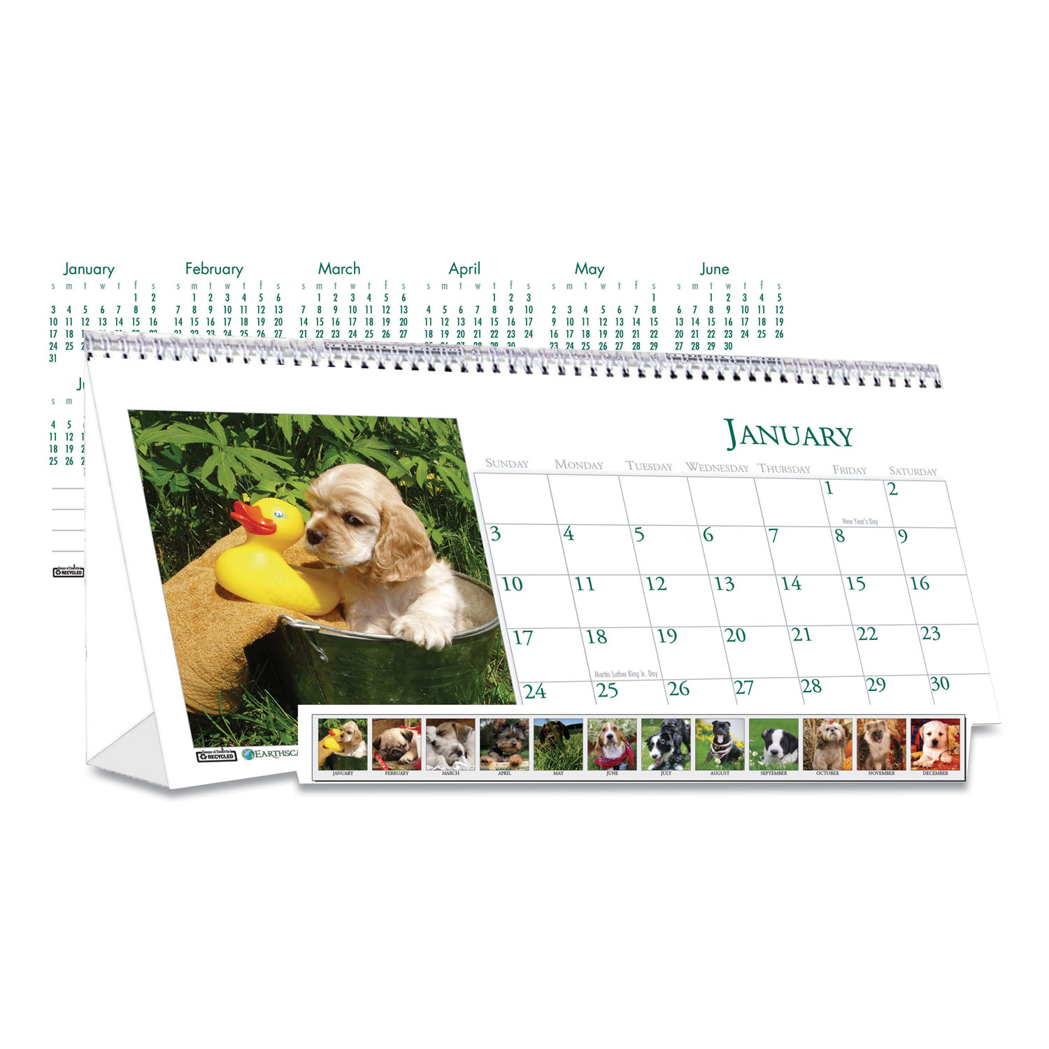 Recycled Puppy Photos Desk Tent Monthly Calendar, 8.5 x 4 ...