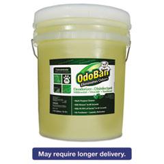 OdoBan® Professional Series Deodorizer Disinfectant, 5gal Pail, Eucalyptus Scent ODO9110625G