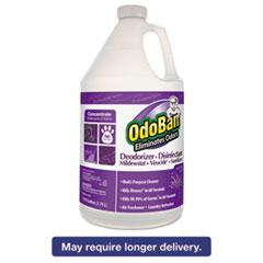 OdoBan® Professional Series Deodorizer Disinfectant, 1gal Bottle, Lavender Scent, 4/CT ODO911162G4
