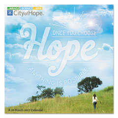 AT-A-GLANCE® Day Dream® City Of Hope Wall Calendar Thumbnail