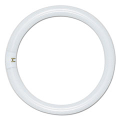 Satco® Circleline Fluorescent Tube, 22 Watts