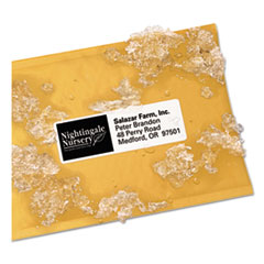 WeatherProof Durable Mailing Labels w/ TrueBlock Technology, Laser Printers, 1.33 x 4, White, 14/Sheet, 50 Sheets/Pack
