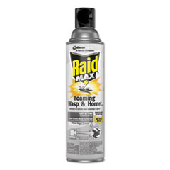 Raid® Max Foaming Wasp & Hornet Killer