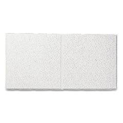 """Fine Fissured Second Look Ceiling Tiles, Directional, Angled Tegular (0.94""""), 24"""" x 48"""" x 0.75"""", White, 10/Carton"""