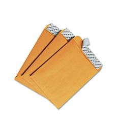 Redi Strip Catalog Envelope, #55, 6 x 9, Brown Kraft, 100/Box