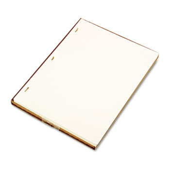 Wilson Jones® Minute Book Refill Ledger Sheets Thumbnail